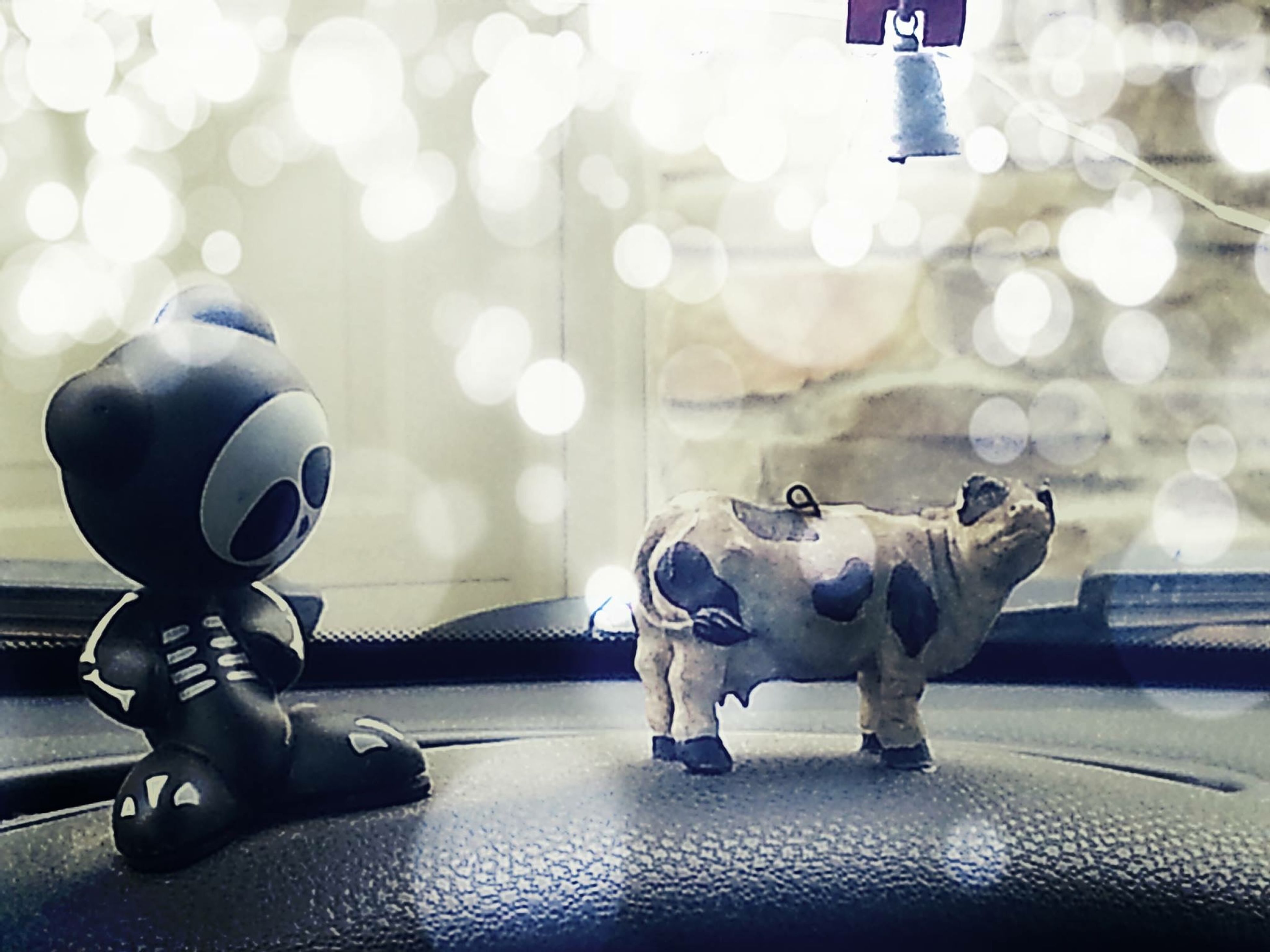 indoors, transportation, toy, close-up, street, focus on foreground, no people, mode of transport, day, sport, one animal, full length, flooring, technology, land vehicle, selective focus, reflection, animal themes, sunlight