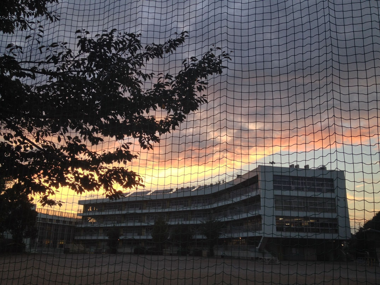 網越しに見えた夕焼けはとても綺麗でした✨ Sunset Sunset_collection Sky_collection Clouds And Sky