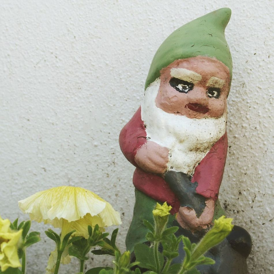 Don't mess with a garden gnome... Who Are You Looking At? Garden Gnome Angry Look War Paint Keep Out Showcase June