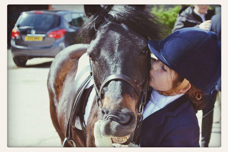Me and my beautiful man, Rossway Grandee ? Horses I Love Horses First Eyeem Photo