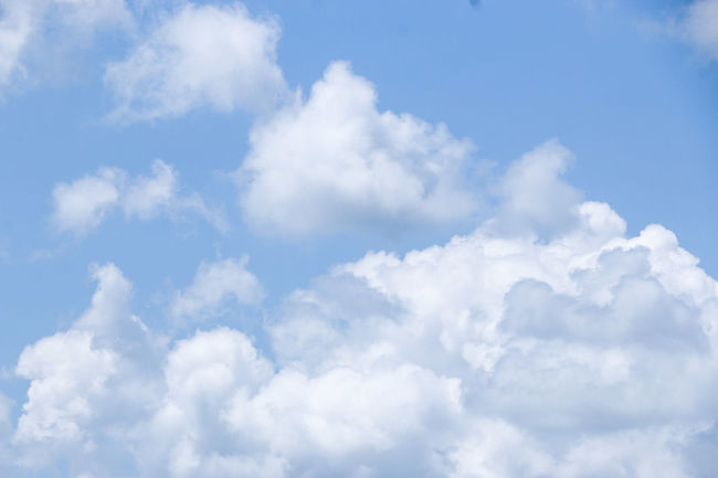 Backgrounds Beauty In Nature Blue Cloud - Sky Cloudscape Cumulus Cloud Day Fluffy Heaven Horizontal Low Angle View Nature No People Outdoors Scenics Sky Sky Only Softness Sunlight Tranquility White Color