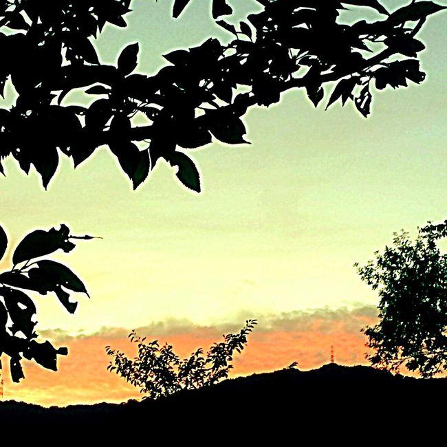 Creative Light And Shadow VariousColors Beautiful Nature EyeEm Nature Lover Enjoying Life Clouds And Sky Sky Summer