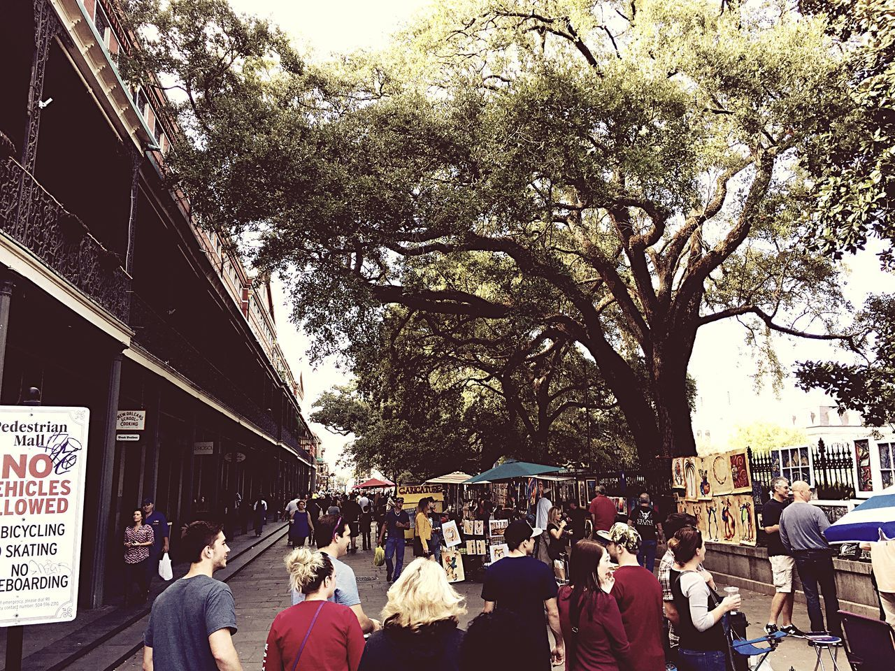 Tree Large Group Of People Building Exterior Women Men Architecture Built Structure Outdoors Growth City Real People Day Crowd Adults Only Nature Adult People Jackson Square