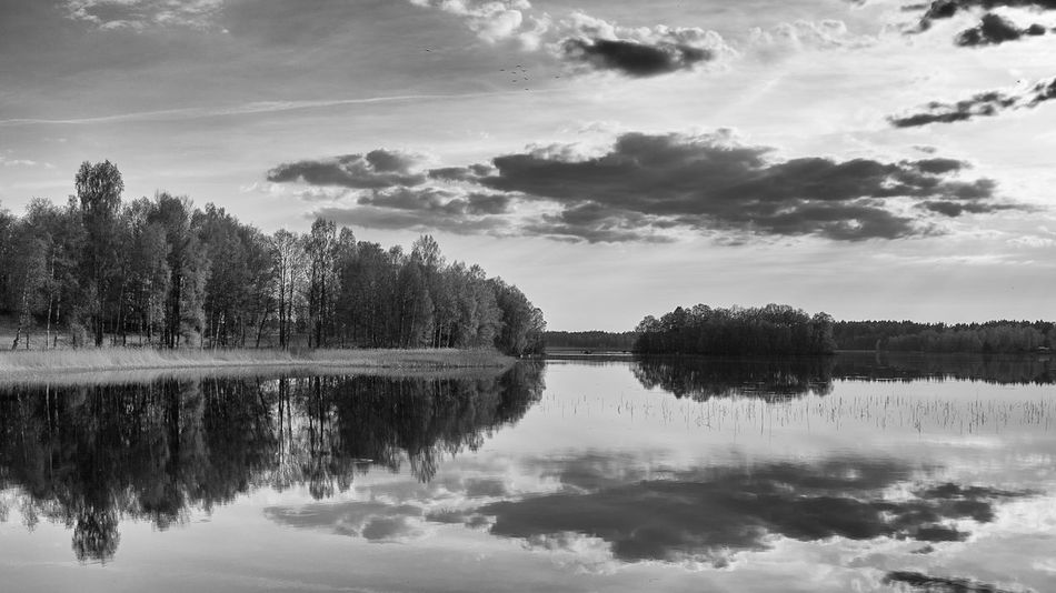 Beauty In Nature Black & White Photography Black And White Cloud - Sky Day Exceptional Photographs First Eyeem Photo Hello World Idyllic Lake Landscape Miles Away Nature No People Outdoors Reflection Reflection Lake Scenics Sky Tranquil Scene Tranquility Travel Destinations Tree Water