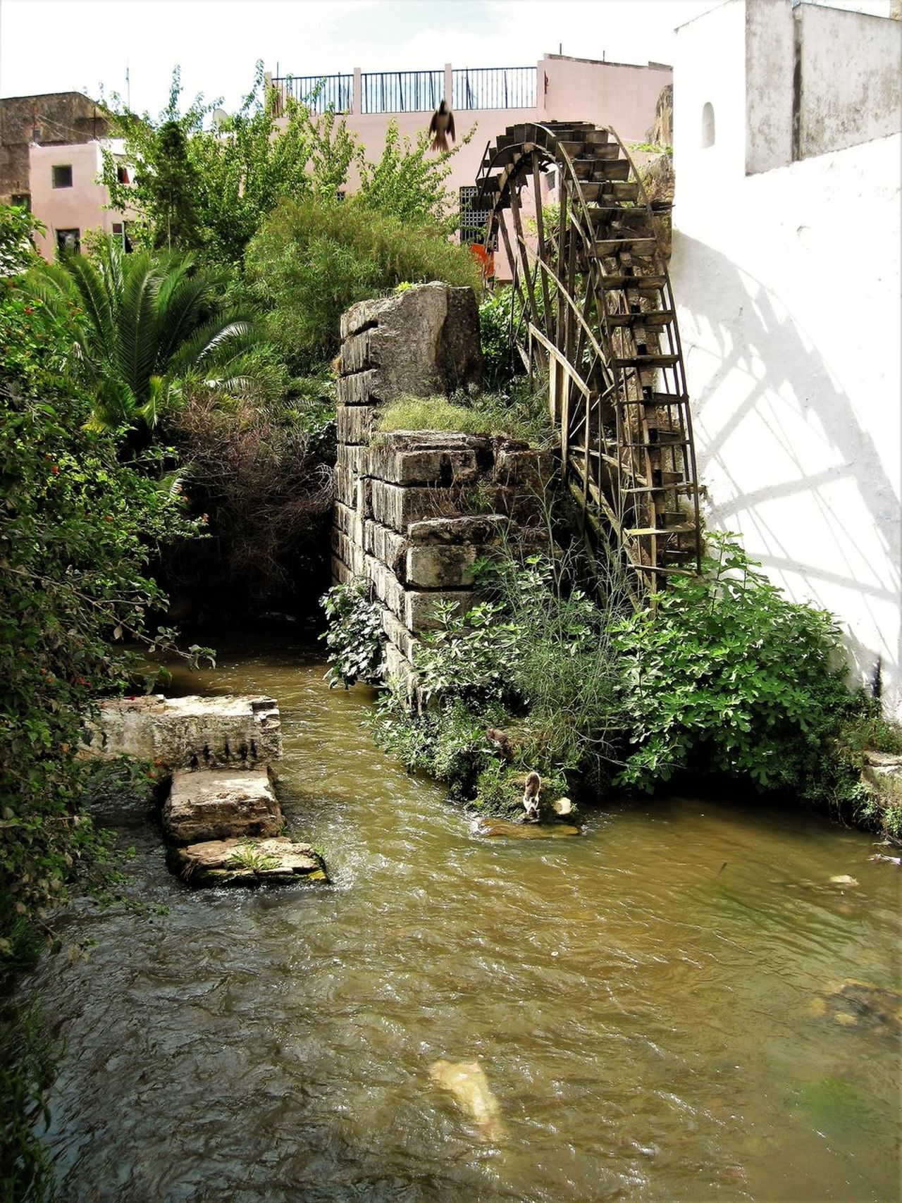 Architecture Building Exterior Built Structure Day Grass Nature No People Outdoors Sky Tree Water Water Wheel Watermill