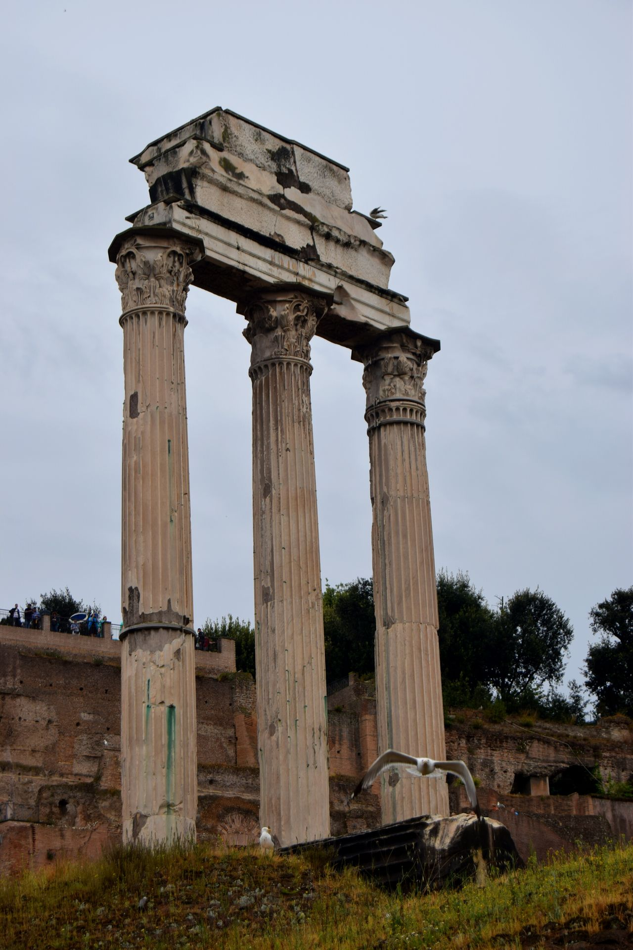 Roma Rome Italy🇮🇹 White Sky Center Forum Clouds Famous Place Ancient Culture The Week Of Eyeem Ancient Architecture Photography Photographer Old Walk Ancient Ruins Temple Architecture Temple Ruins Exploring Streetphotography Picoftheday Photooftheday Marmol Rainy Days