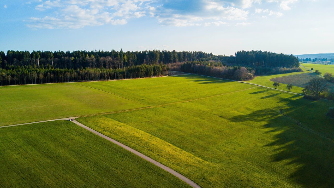 A flight with DJ i Mavic Pro 😊 Tree Green Color Tranquil Scene Nature Beauty In Nature Scenics Grass Field Landscape Sky Tranquility No People Outdoors Day Dji Mavic Pro Beautiful EyeEm Best Shots Forest Drone  Germany Live For The Story