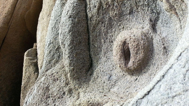 Rock Formations on Yerba Buena Island