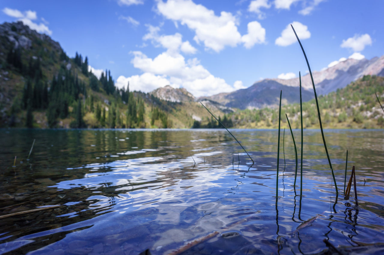 Lake Sary Chelek, Kyrgyzstan Beauty In Nature Day Lake Landscape Mountain Nature No People Outdoors Scenery Scenics Sky Tranquility Tree Water