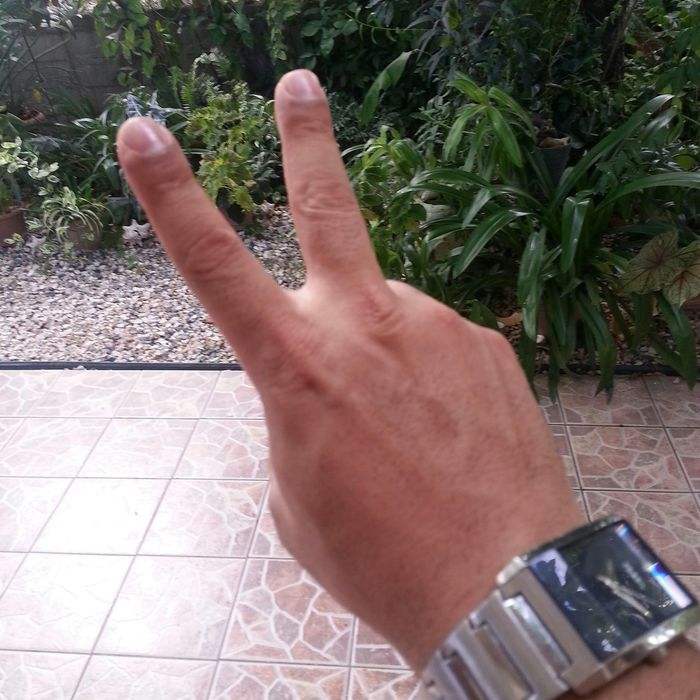 Peace ✌ Two Fingers Salud Amig@s! Saludos!