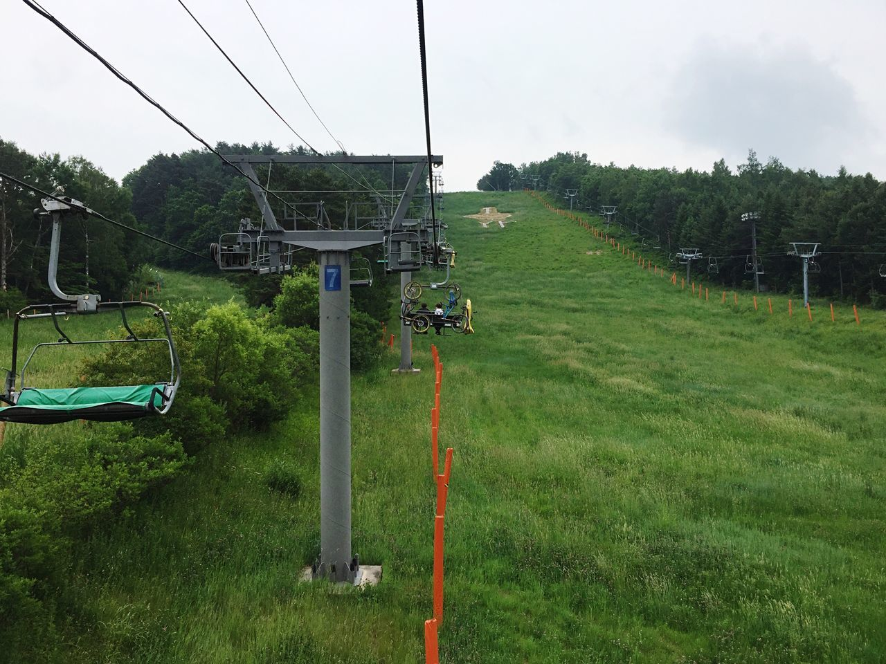 Ski Resort in Summer Cable Sky Tree Day Outdoors Field No People Grass Nature Telephone Line Beauty In Nature Cable Car Ski Resort