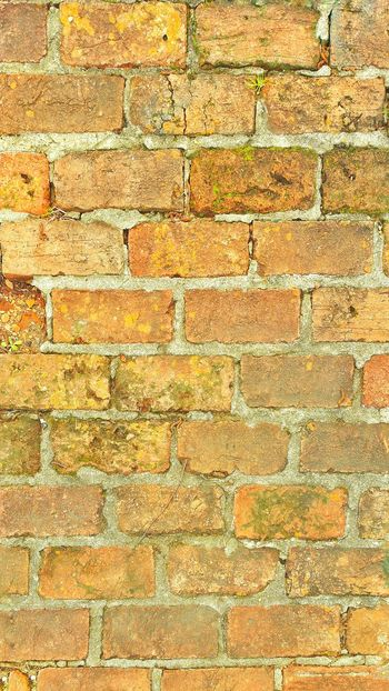 Bricks Old Bricks Backgrounds Old Vintage Bricks Vintage Antique Room For Text Room For Copy Red Bricks Walkway Sidewalk Building Materials Rough Texture Weathered Weathered Stone Moss-covered Moss Covered Moss Covered Bricks Brick Wall Background Old Style Hard Surface Textures And Surfaces Textured  Lines And Patterns