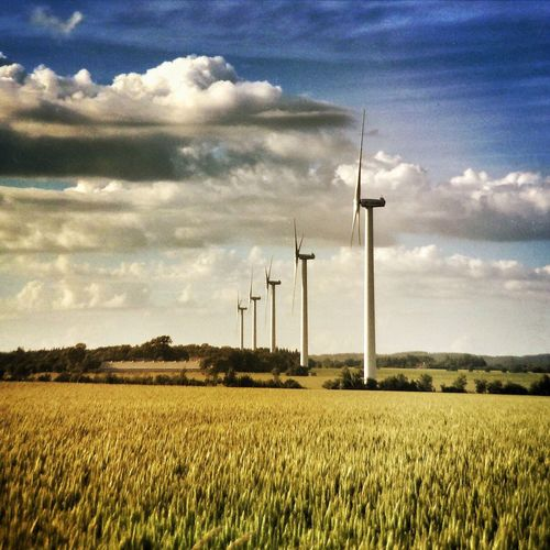 Candles in the wind Nature Energy Landscape Enjoying The View