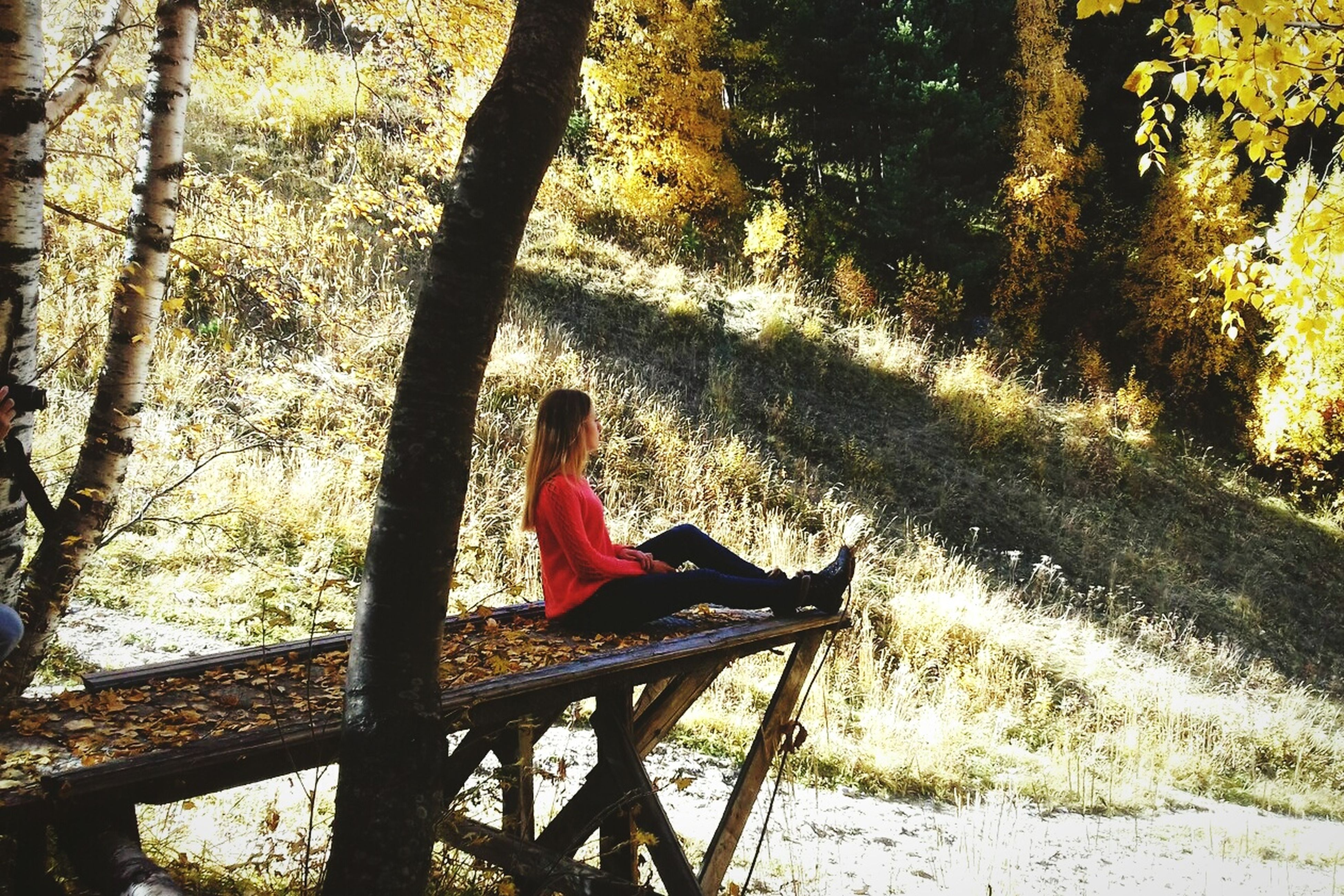 tree, sitting, full length, casual clothing, leisure activity, tree trunk, relaxation, nature, person, solitude, tranquility, day, outdoors, remote, tranquil scene, non-urban scene