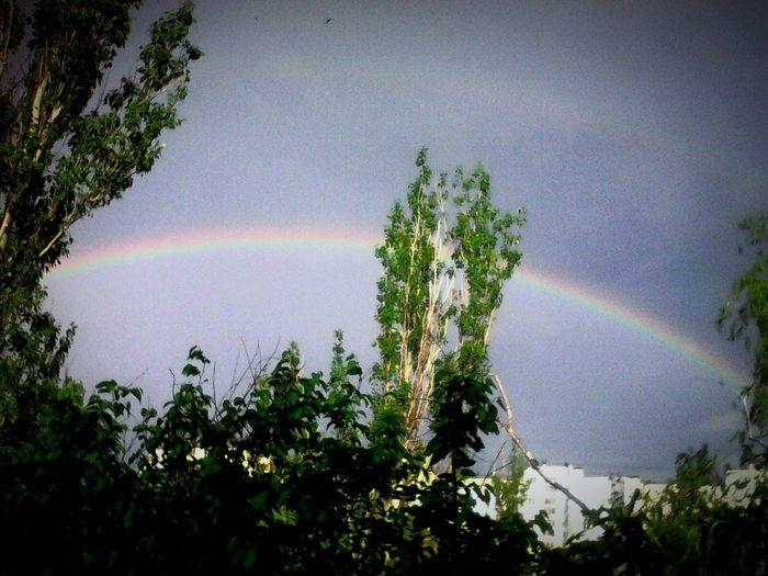 Дождик и солнышко создали такую красоту *-*