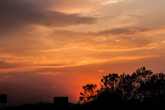 Beauty In Nature Cloudy Dramatic Sky EyeEm Best Shots EyeEm Nature Lover Nature Orange Color Silhouette Sun Sunset Tree