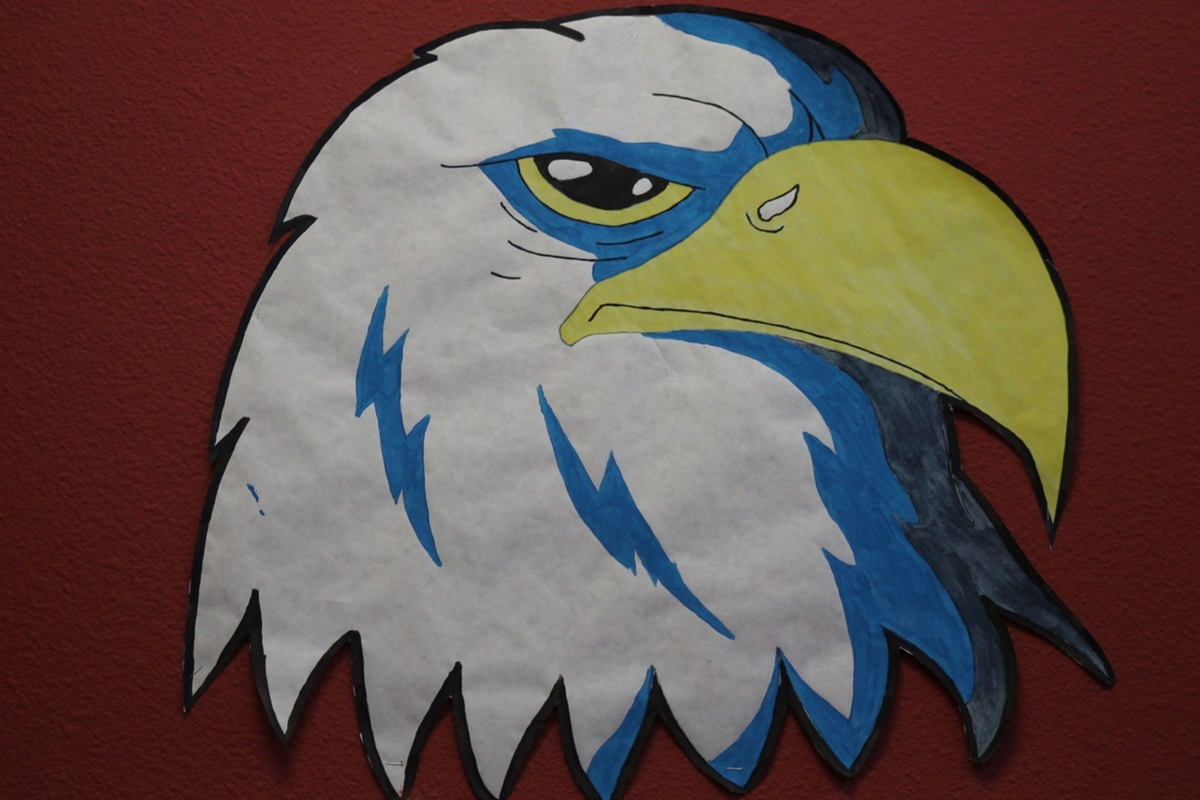Akins Eagles