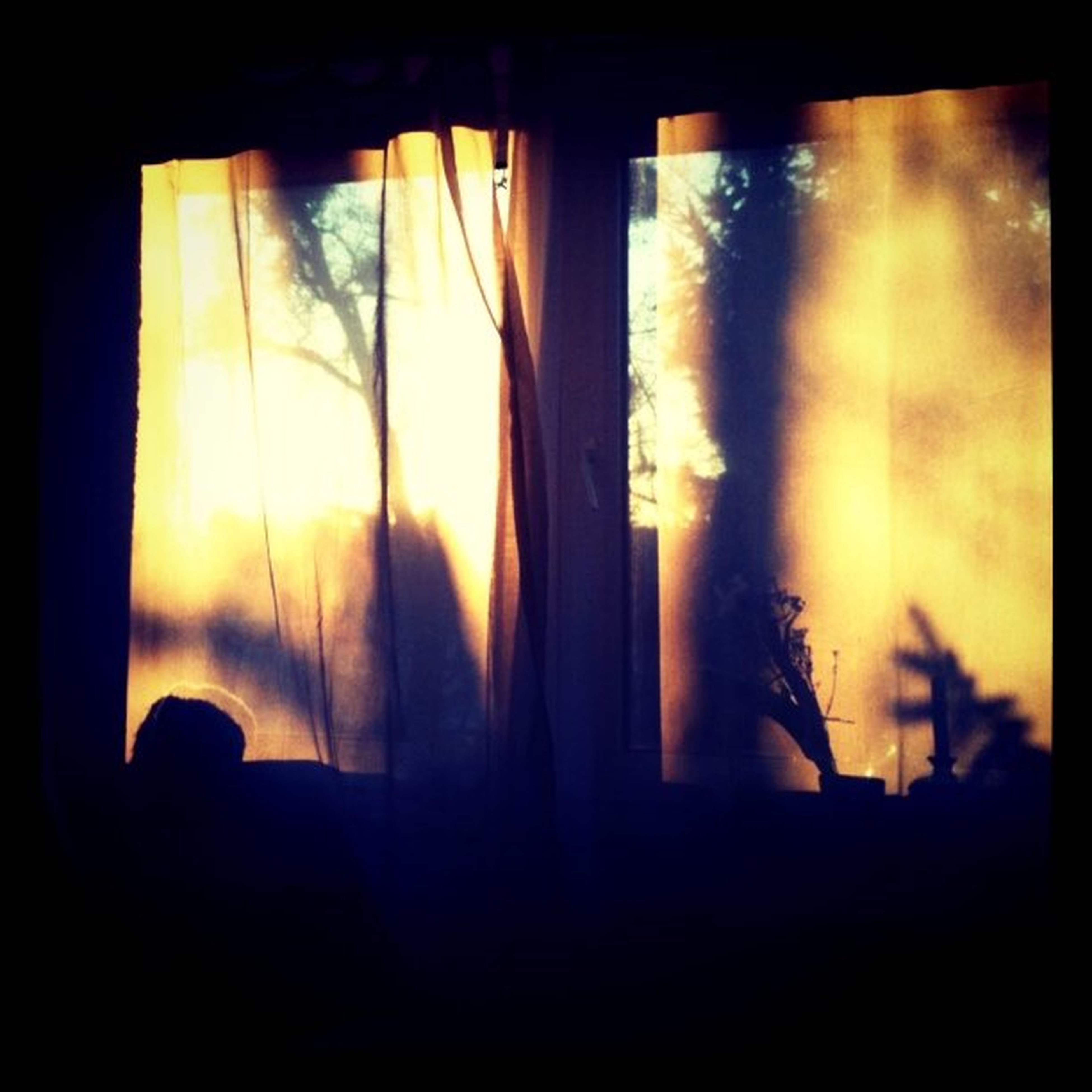 sunset, window, silhouette, indoors, glass - material, transparent, orange color, sun, dark, curtain, looking through window, sky, sunlight, nature, glass, reflection, beauty in nature, close-up, home interior, outline
