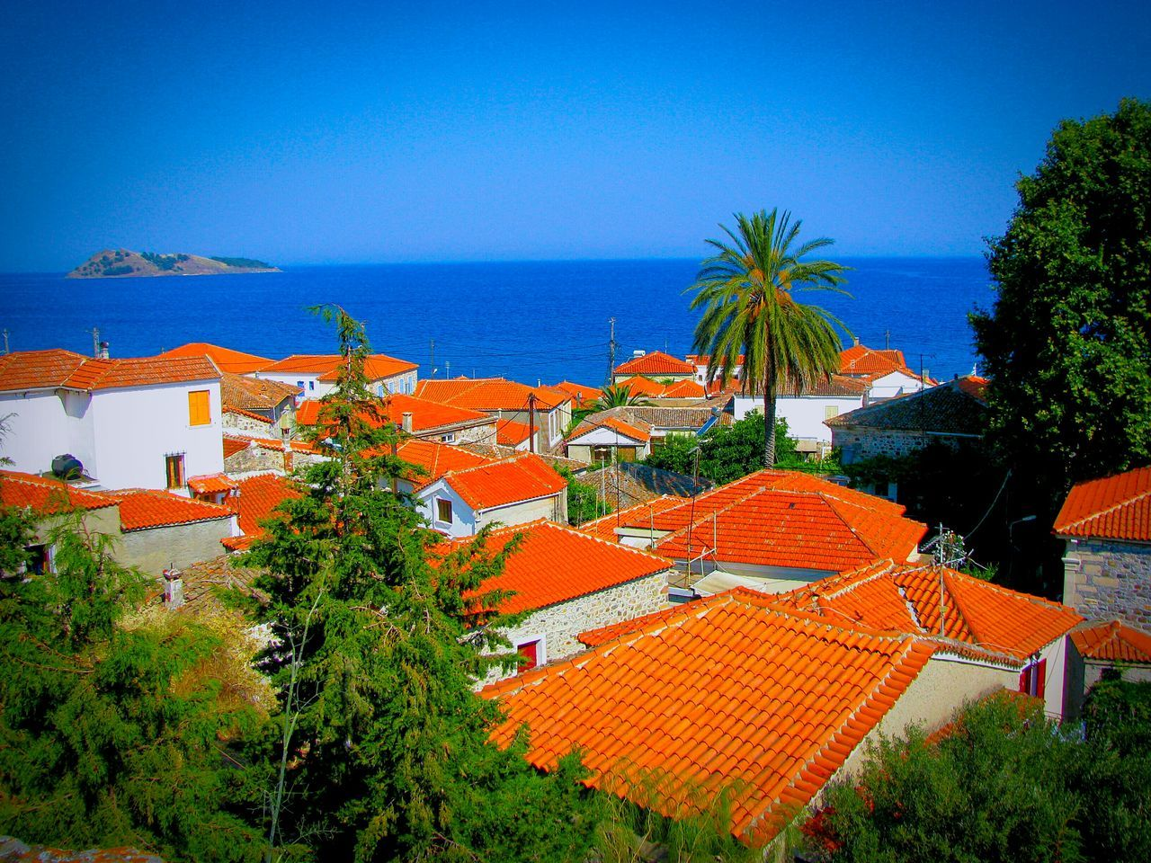 The Architect - 2016 EyeEm Awards Village Greek Village Houses View From The Top View From Above Roofs Red Roofs Traditional Picturesque Village And Sea Seaside Village The Great Outdoors - 2016 EyeEm Awards The Great Outdoors With Adobe Petra Lesvos Island Greek Islands Trees Palm Tree Seaside Village View Villagescape Architecture