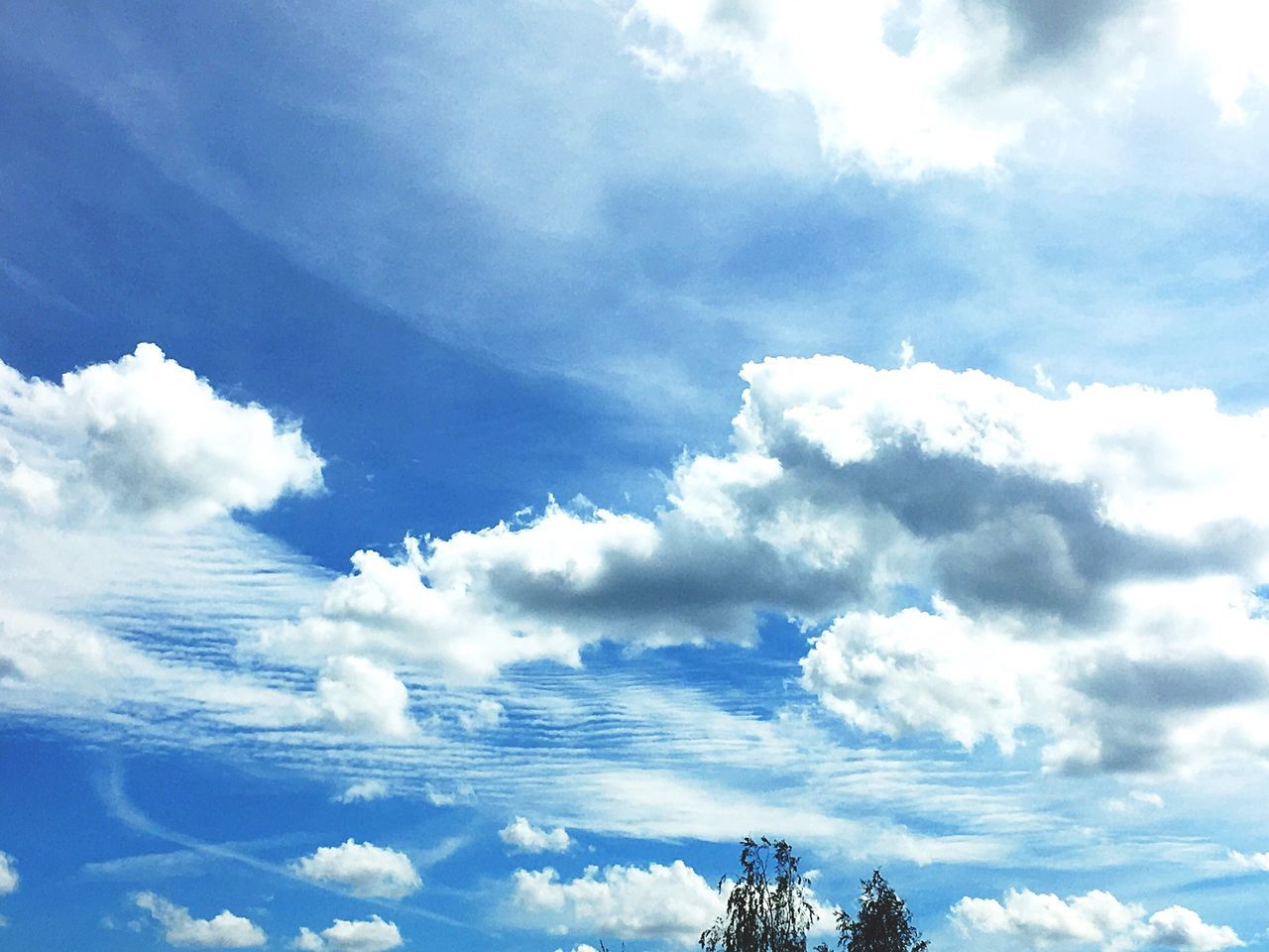 sky, beauty in nature, low angle view, cloud - sky, nature, scenics, day, tranquility, no people, outdoors, blue, backgrounds, tree