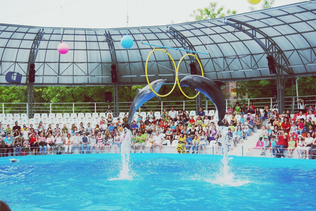 large group of people, swimming pool, water, real people, fun, leisure activity, arts culture and entertainment, water park, outdoors, lifestyles, men, day, crowd, enjoyment, togetherness, swimming, water slide, sky, people