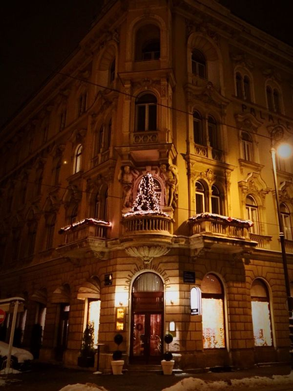 Zagreb, Croatia Zagreb IPhoneography Iphonephotography IPhone Hotel Palace Hotel Zrinjevac Restaurant Winter Wintertime Winter Wonderland Snow Cold Cold Days Raining Decoration Christmas Decorations Love City Cityscapes Architecture Detail Lights Light