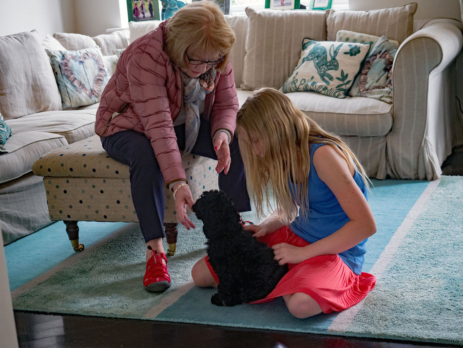 Good Bye Bonding Casual Clothing Childhood Dog Dog Love Domestic Animals Domestic Life Family Family❤ Full Length Girls Indoors  Long Hair, Don't Care. Love One Animal Pets Real People Red Dress Senior Adult Senior Women Sitting Sofa Stool Two People Women