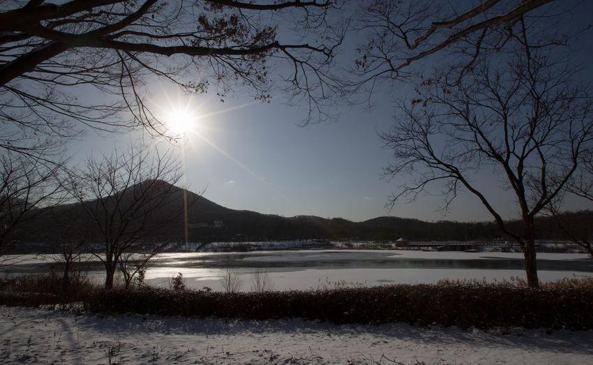 눈 눈오는날 인천대공원, 추운날