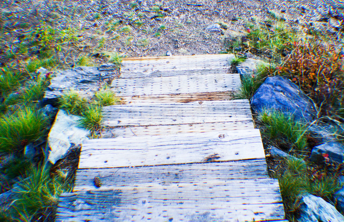 Wood - Material The Way Forward Plant Water Nature Tranquility Outdoors Growth Boardwalk Damaged Day Tranquil Scene Surface Level No People Non-urban Scene Narrow Scenics Green Color Messy Solitude Bigfork Mt