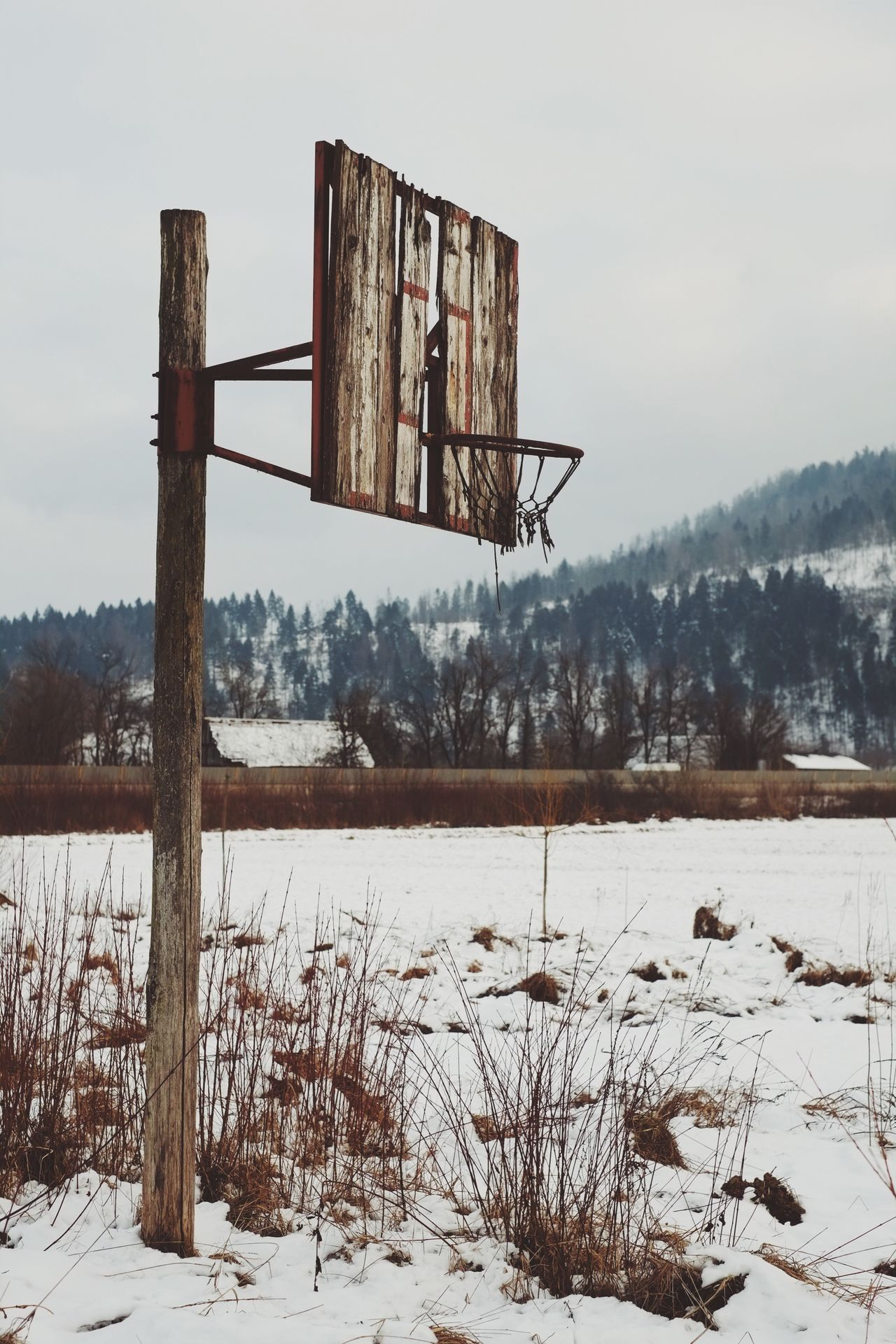 Off season basket court. Winter Cold Temperature Snow Nature Weather Field Scenics Bare Tree No People Landscape Tranquil Scene Day Outdoors Sky Beauty In Nature Tranquility Tree Basketball Basketball Court Basketball Hoop Off Season