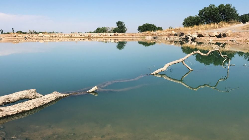 EyeEm Selects Water Nature Tranquility Reflection Outdoors Tranquil Scene Beauty In Nature Day Scenics No People Sky Clear Sky Landscape Tree Salt - Mineral Salt Basin