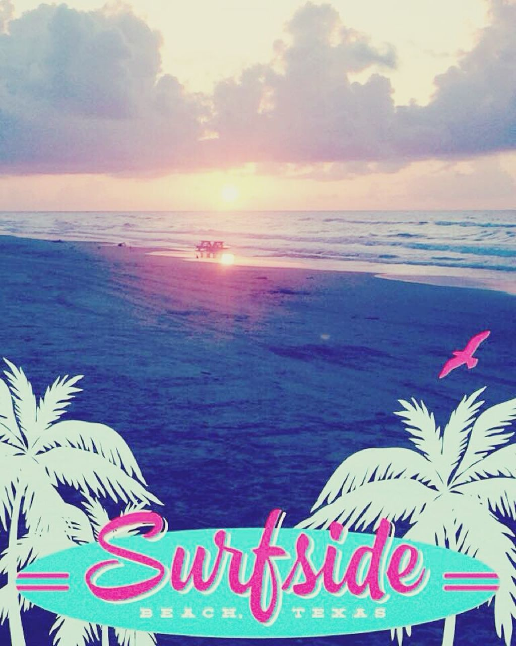 sea, horizon over water, sun, beach, sunset, text, tranquil scene, water, tranquility, sky, nature, beauty in nature, scenics, outdoors, communication, no people, sunlight, day, close-up, tree