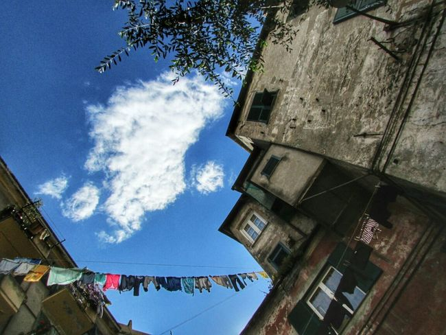 Shoot, Share, Learn - EyeEm Genova Meetup Zena4ever Lookingup EyeEm Global Meetup
