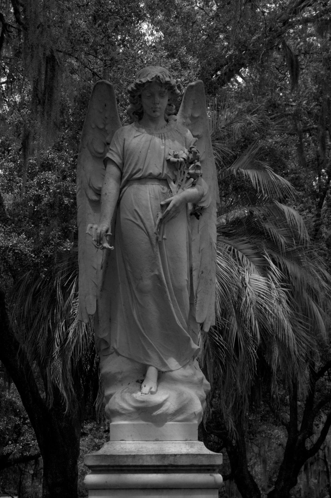 Cemetery Jacksonville JacksonvilleFL Photography Shadow Tombstone