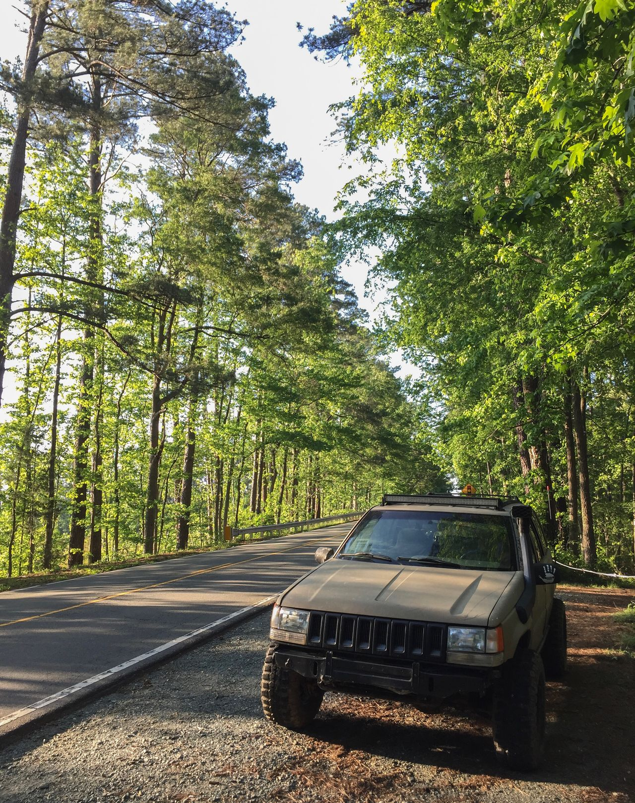 Jeep Jeeplife Tree Car Transportation Road Forest Land Vehicle Day Mode Of Transport Nature Green Color No People Outdoors Growth Trees Offroad Offroad Adventure The Great Outdoors - 2017 EyeEm Awards