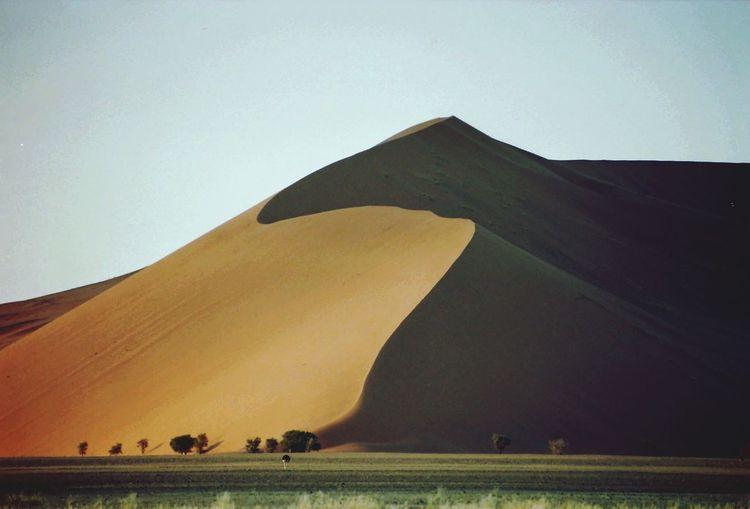 Namibia Namib The KIOMI Collection