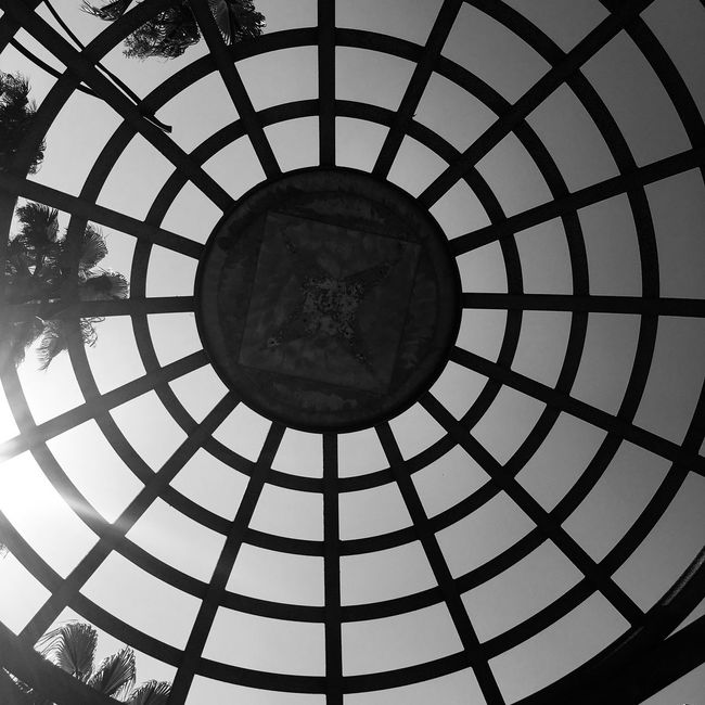 Walk Of Fame Hollywood La Black And White California Abstract