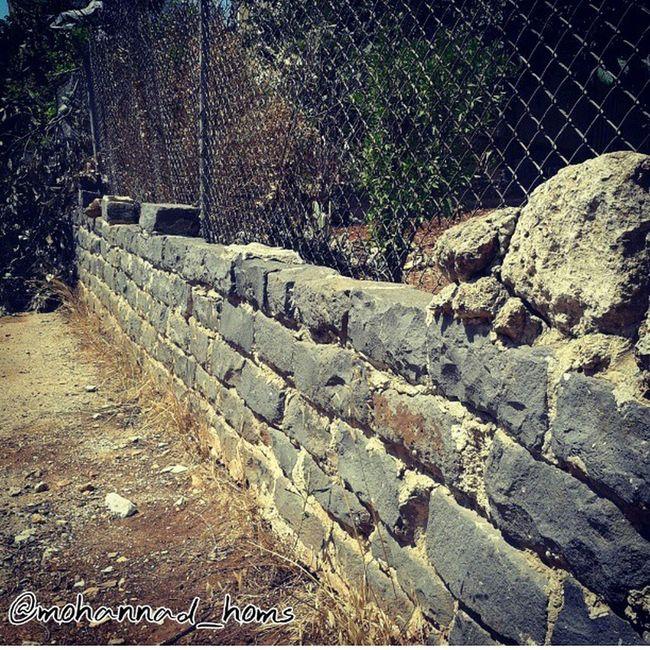 هنا أرض حمص_العدية .. أم الحجارة السوداء :)