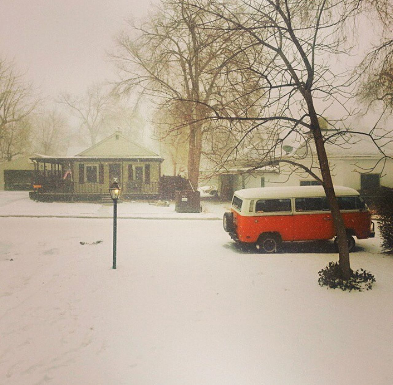 ColoradoBliss! Snow ❄ Volkswagenbus VW Everybodystreet Showcase: November EyeEm Gallery Nature_collection Mothernature