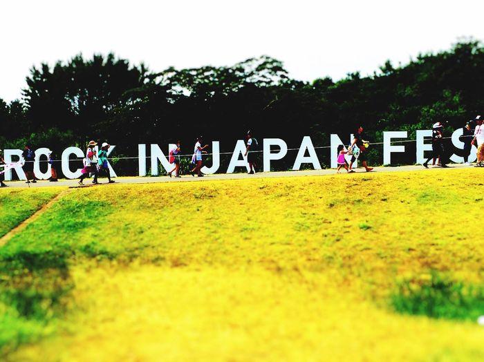 Summer Festival☀️ 1 Summer Festival Memory Rock ROCKINJAPANFES.2015 Rockinjapan