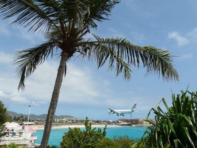 Airport Beach St. Maarten Carribean Beach Landing AirPlane ✈