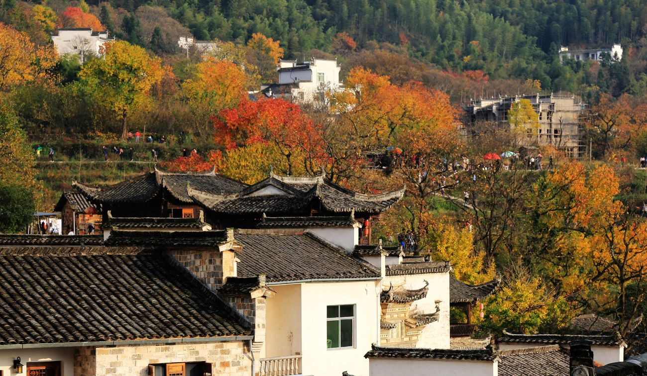 Building Exterior Residential Building Autumn Nature Tranquility Beauty In Nature Landscapes Mountain Scenics Ecology Eye4photography  Landscape_lovers EyeEm Nature Lover Landscape_photography EyeEm Best Shots Natural Phenomenon Tranquil Scene Charm China Orange Color Villages House