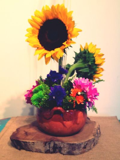 Floreriazarco Hermosillo Sonora México Flowers Pintadas Day8 Sunflower