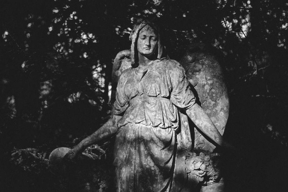 Beautiful stock photos of angel,  Art,  Art And Craft,  Cemetery,  Craft