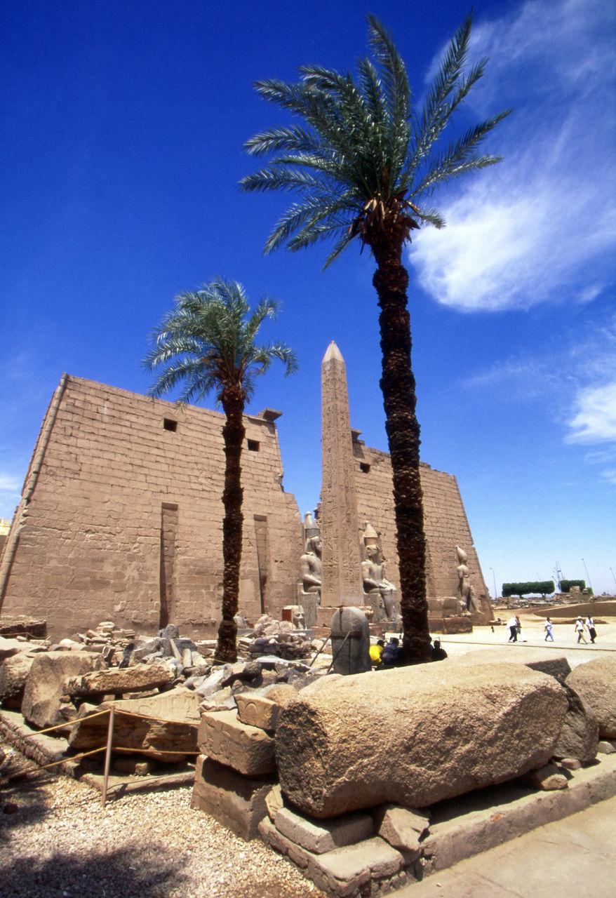 Palm Tree At Karnak Temple Against Sky