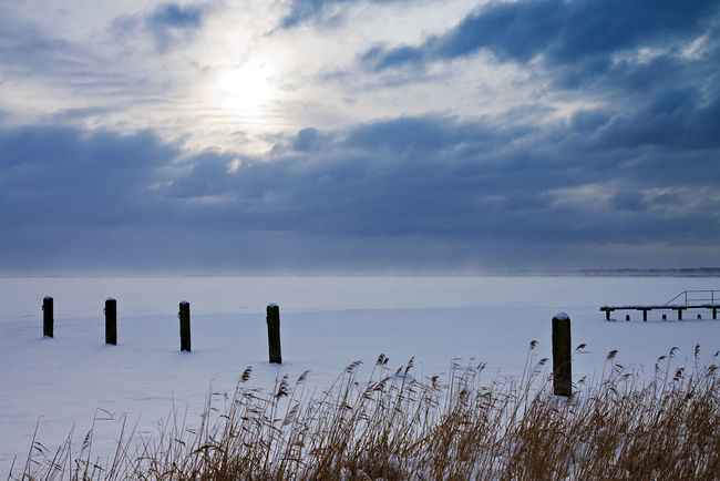 Winter landscape on a lake. Beauty In Nature Bodden Cloud - Sky Day Dolphins Horizon Over Water Ice Majestic Nature No People Non-urban Scene Outdoors Plant Scenics Sea Seascape Shore Sky Snow Tourism Tranquil Scene Tranquility Water Winter
