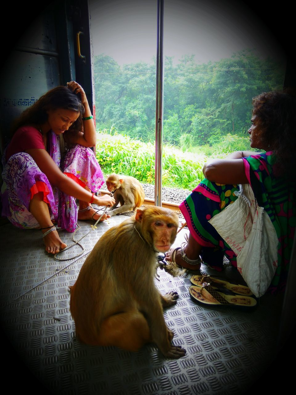 real people, togetherness, girls, pets, dog, sitting, animal themes, childhood, full length, indoors, domestic animals, day, casual clothing, bonding, mammal, elementary age, lifestyles, friendship, relaxation, tree, young adult, people