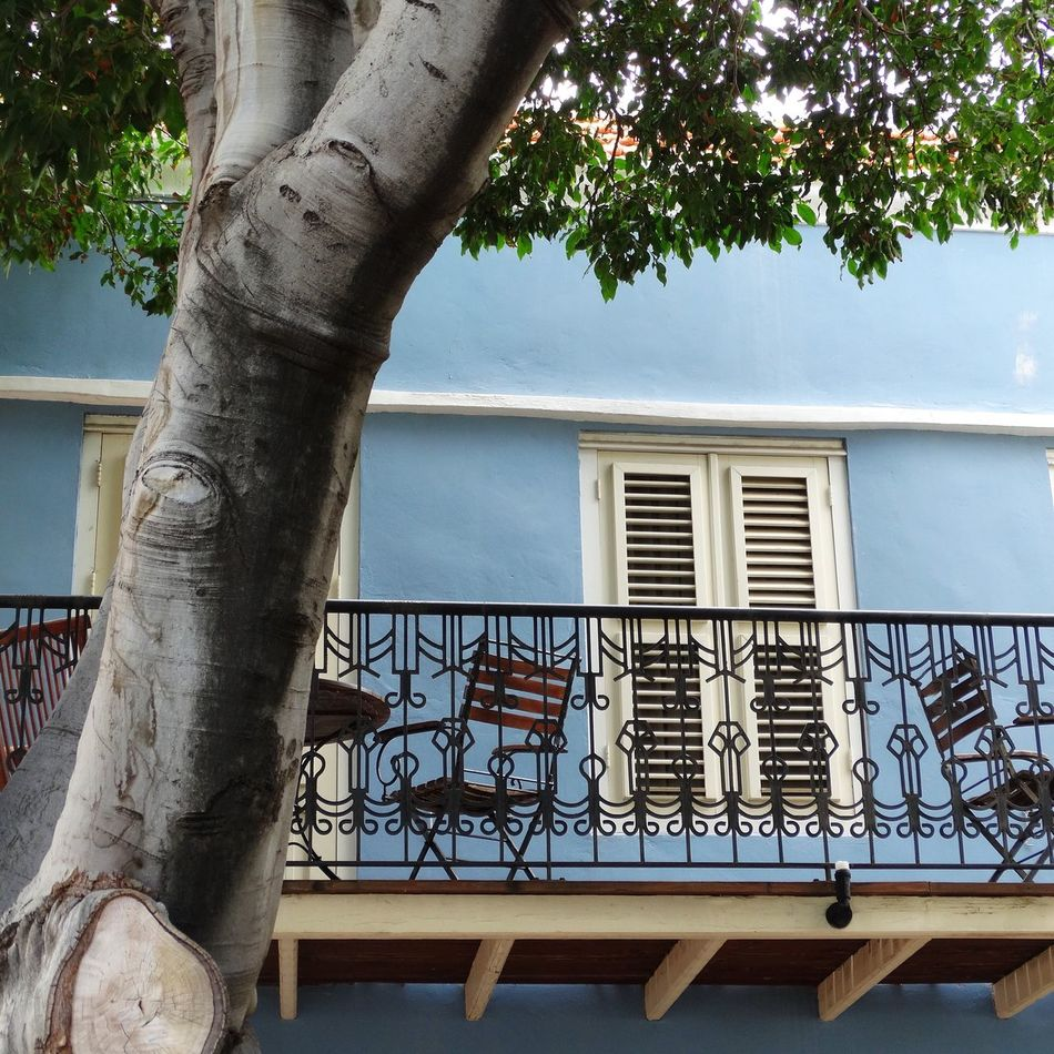 Showcase July Curacao Curaçoa Willemstad Coloured Houses Pastel Blue