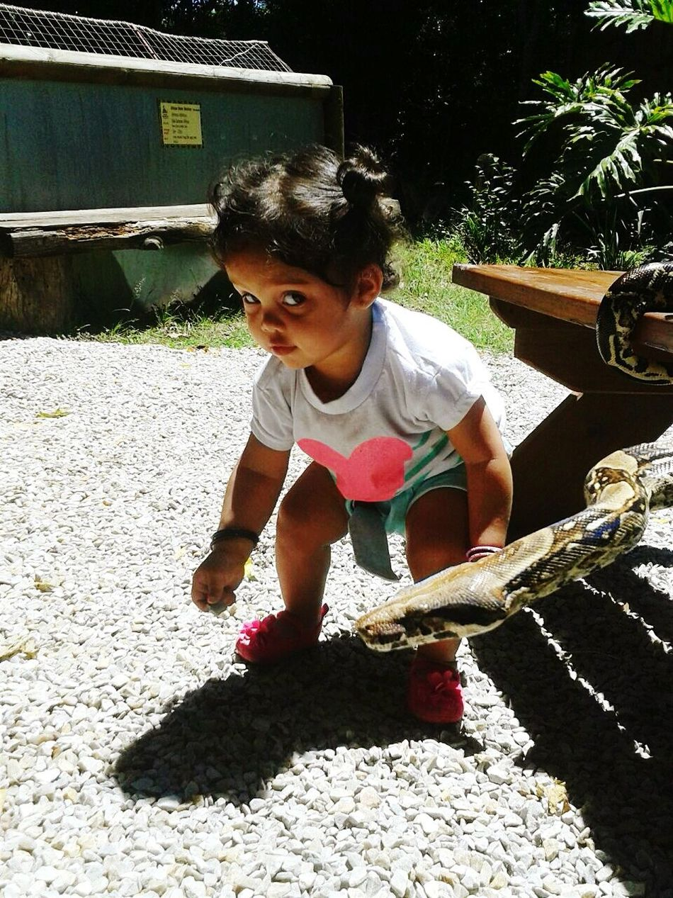 The Moment - 2015 EyeEm Awards Bravelil1 Photocredits2zaidaL Sheisthecutest Kids Kids Having Fun Moments Snakes Animals