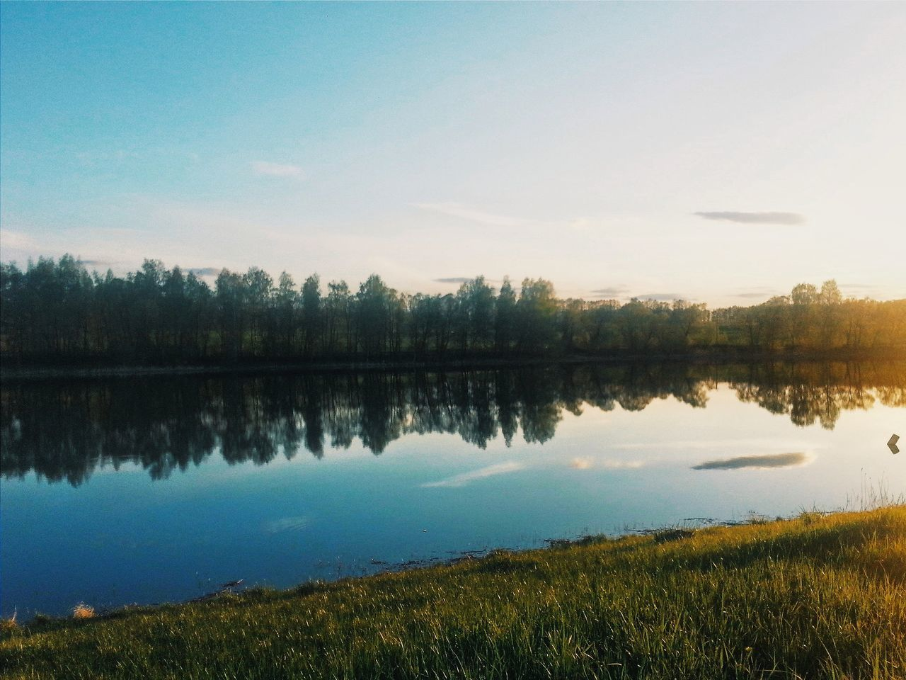 reflection, lake, water, nature, tree, tranquil scene, sky, tranquility, beauty in nature, scenics, outdoors, no people, grass, growth, travel destinations, sunset, day